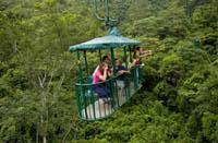 Vuelos Costa Rica: Tour por el teleférico del bosque lluvioso.